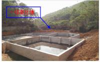博白县三合种养场年存栏2000头生猪项目